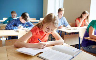 Stappenplan schoolscan Nationaal Programma Onderwijs