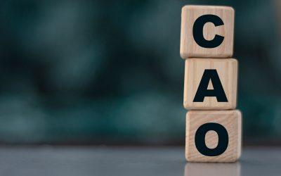 Leden Onderwijsontwikkeling Nederland bereiken akkoord voor nieuwe CAO Onderwijsadviesbureaus